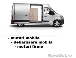servicii de mutari internationale